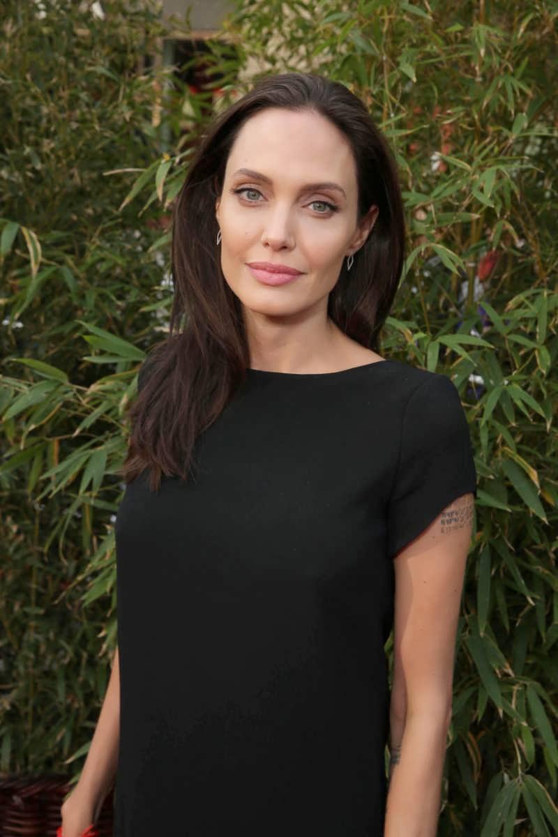 Angelina 2016